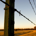 barb-wire-fences-waco